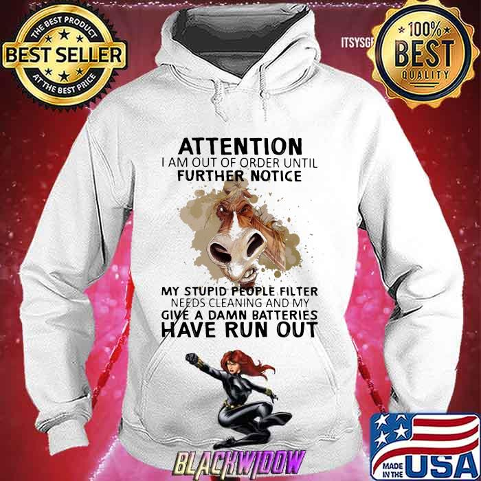 Attention I Am Out Of Order Until Futher Notice My Stupid People Filter Needs Cleaning And My Give A Damn Batteries Have Run Out Horse Shirt Hoodie
