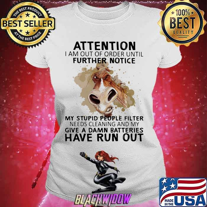 Attention I Am Out Of Order Until Futher Notice My Stupid People Filter Needs Cleaning And My Give A Damn Batteries Have Run Out Horse Shirt Ladies tee